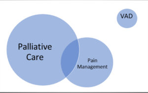 Palliative medicine, palliative care and voluntary assisted dying - Featured Image