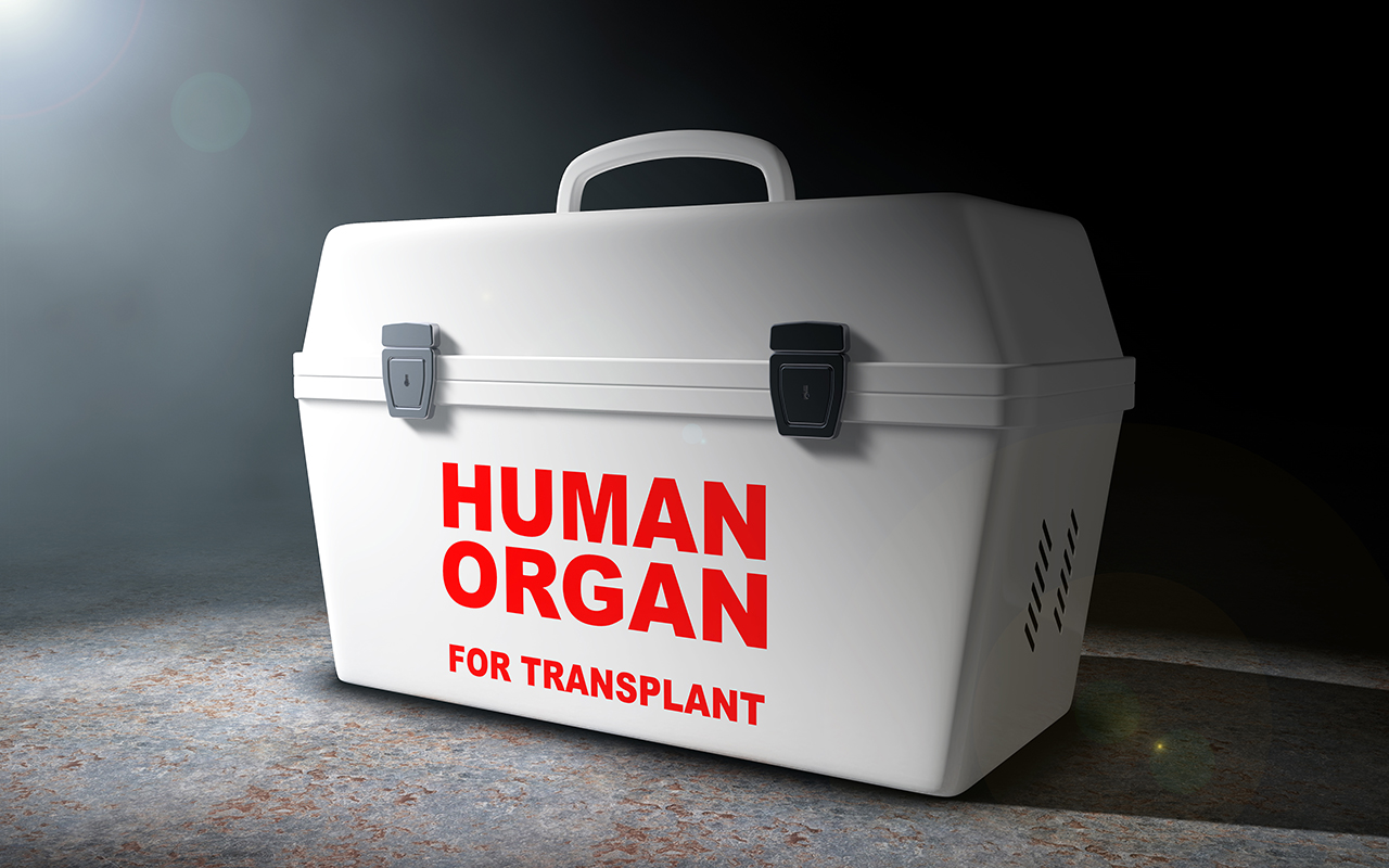 Transplant tourism: survey shows under-reporting, need for education