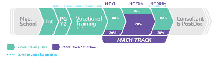 Training tracks for future clinician researchers - Featured Image