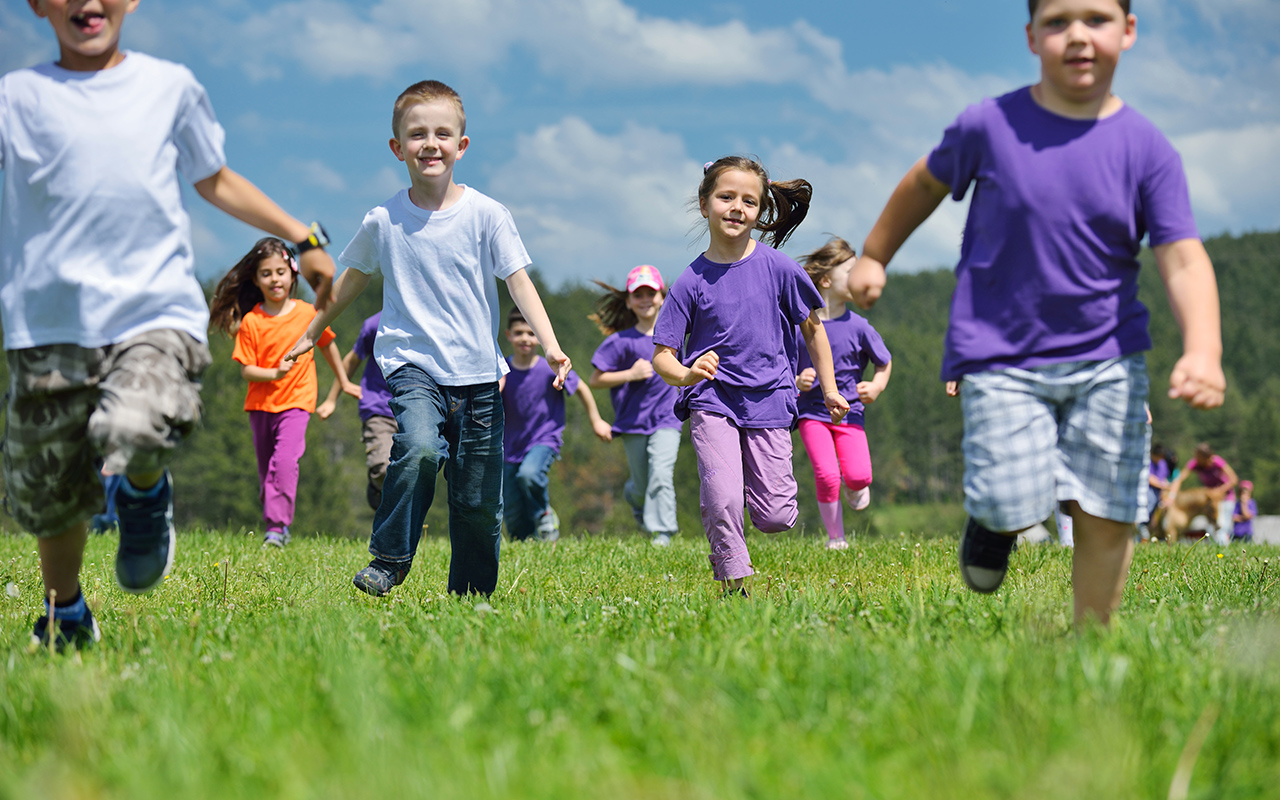 Health Promoting Schools: a healthy child is a learning child