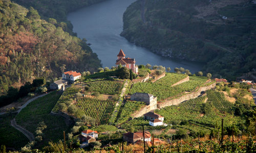 A day in Portugal's Douro Valley - Featured Image