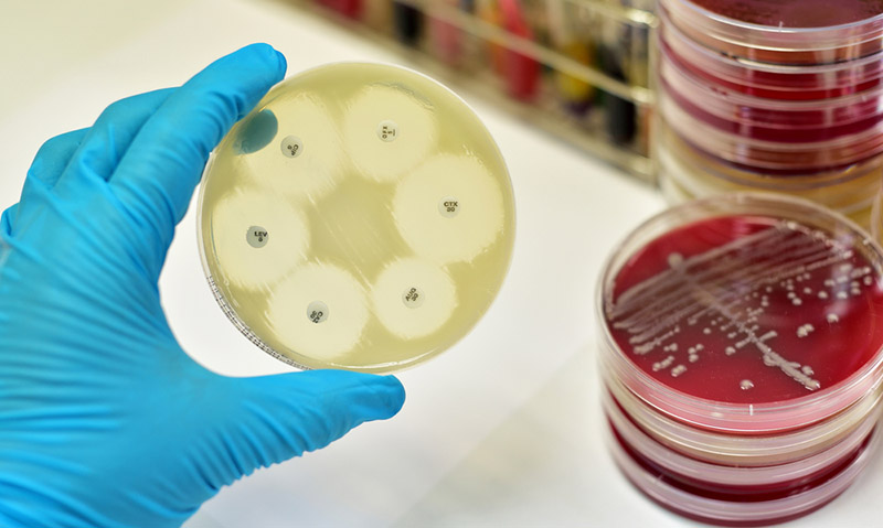 "Results from antibiotic resistance trial ""astounding"""