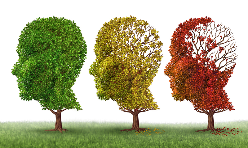 Do we need a new definition for Alzheimer's disease?