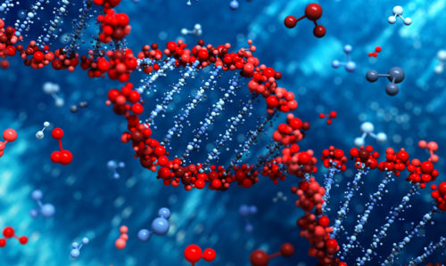 DNA is not your health destiny: doctors - Featured Image