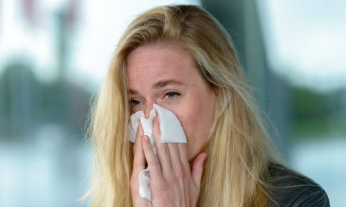 Ditch antihistamines for hayfever: experts - Featured Image
