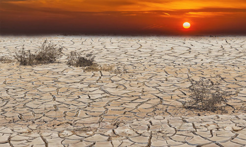 Health neglected in climate talks - Featured Image