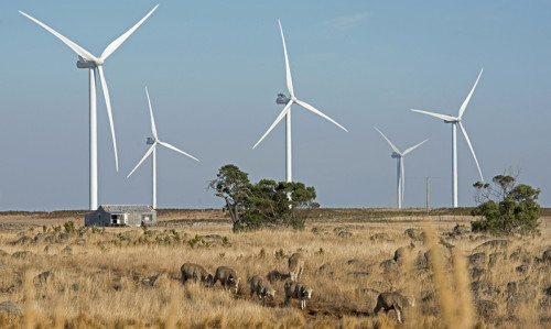 Maelstrom of money blows over wind farms - Featured Image