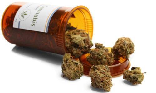 Medicinal cannabis can now be prescribed by NSW GPs - Featured Image
