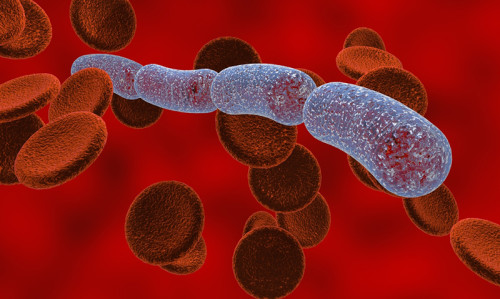 Sepsis early intervention saves lives, NSW study finds - Featured Image