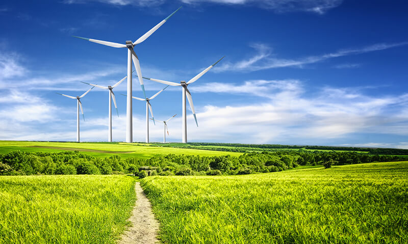 Wind turbines a potential health risk: WHO